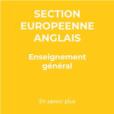 Section-Euro-Bilingue-Anglais-LG