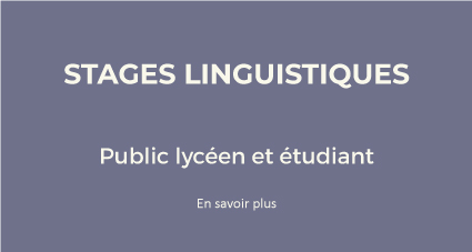 2-4-Stages_linguistiques